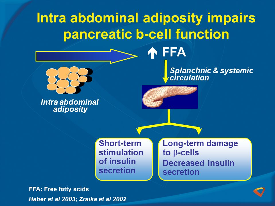 Intra abdominal adiposity impairs pancreatic b-cell function