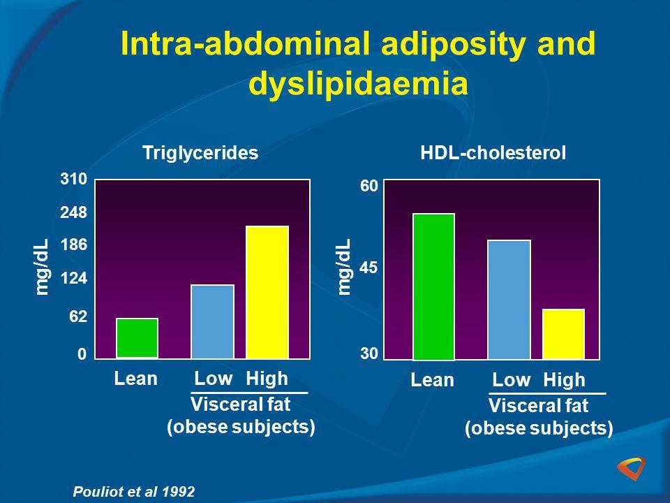 Intra-abdominal adiposity and dyslipidaemia