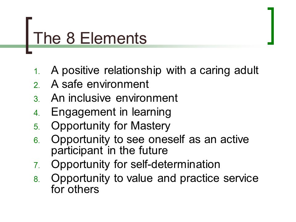 The 8 Elements A positive relationship with a caring adult