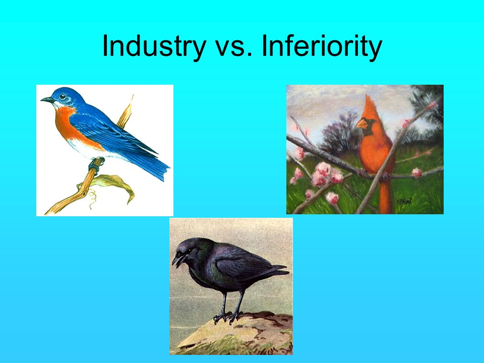 Industry vs. Inferiority