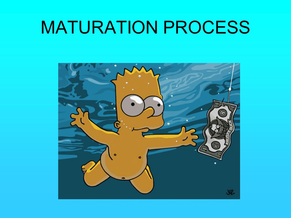 MATURATION PROCESS