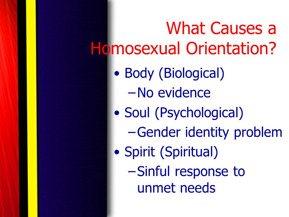 What Causes a Homosexual Orientation