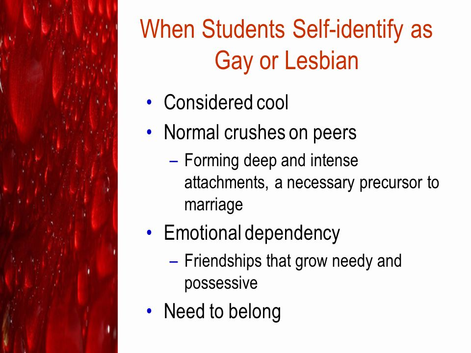 When Students Self-identify as Gay or Lesbian
