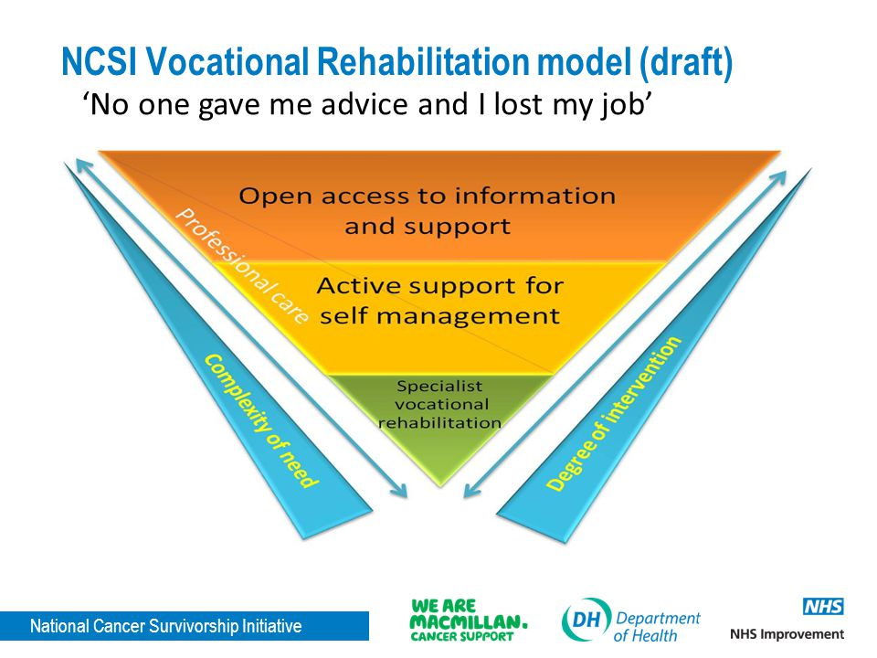 NCSI Vocational Rehabilitation model (draft)
