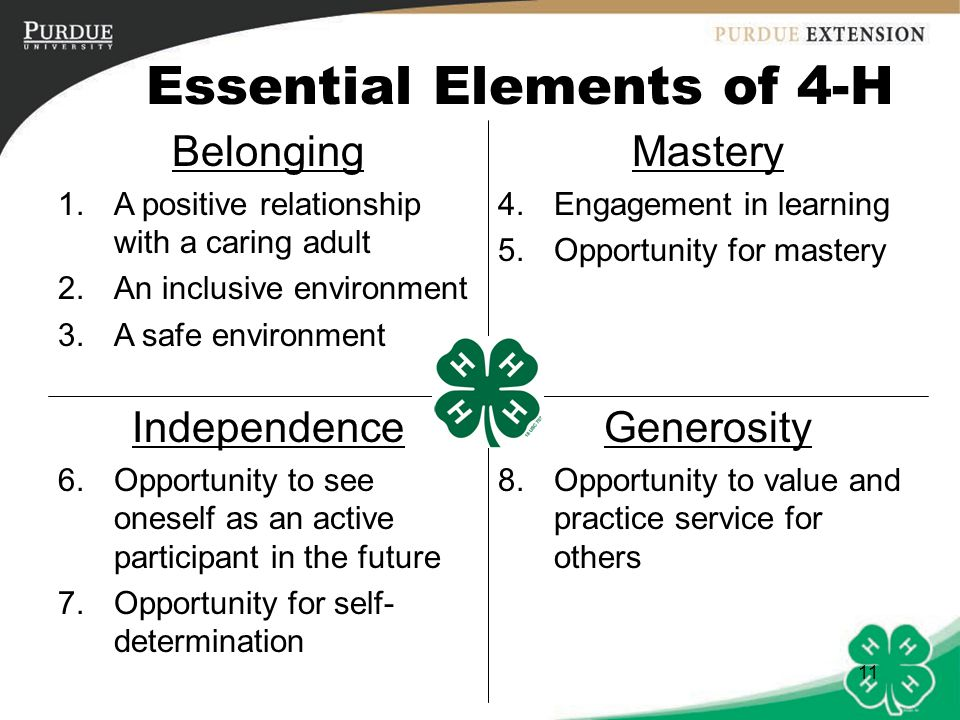 Essential Elements of 4-H