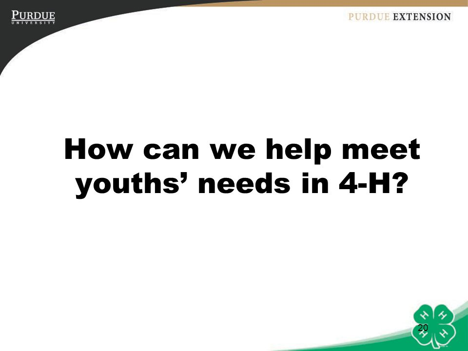 How can we help meet youths' needs in 4-H