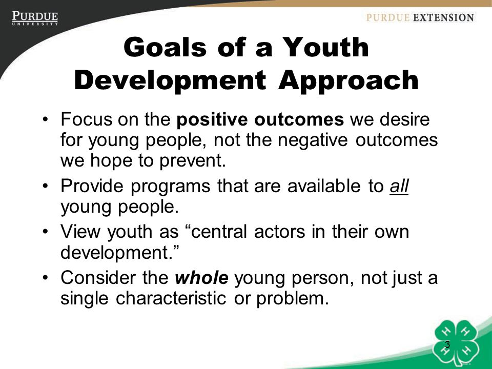 Goals of a Youth Development Approach
