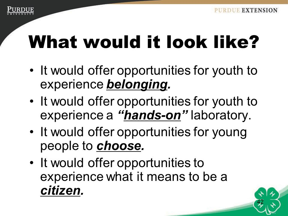 What would it look like It would offer opportunities for youth to experience belonging.