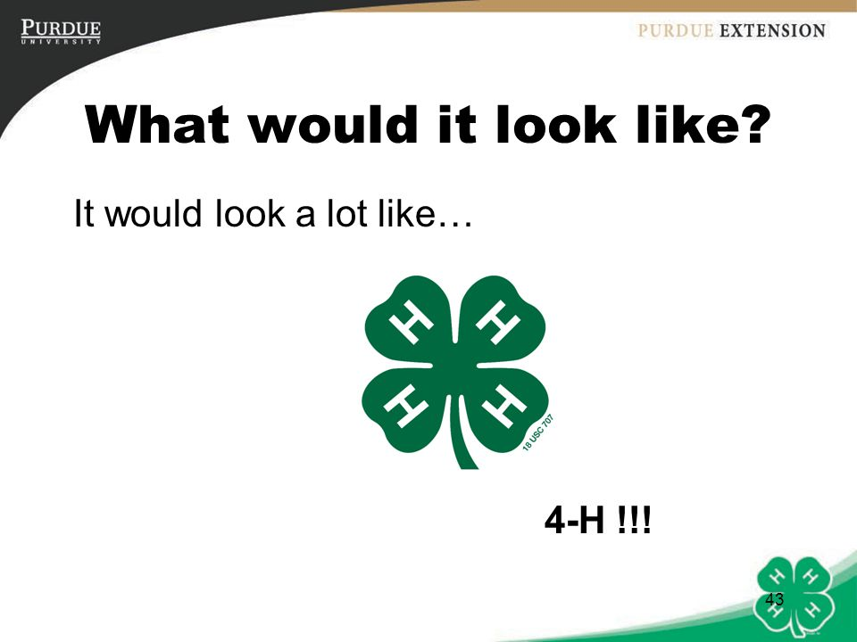 What would it look like It would look a lot like… 4-H !!!