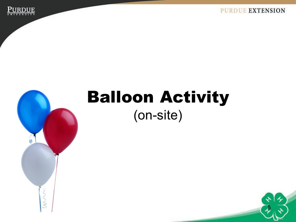 Balloon Activity (on-site)