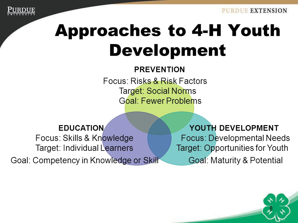 Approaches to 4-H Youth Development