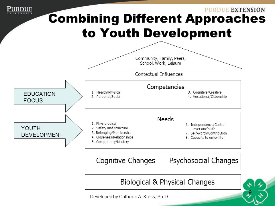 Combining Different Approaches to Youth Development