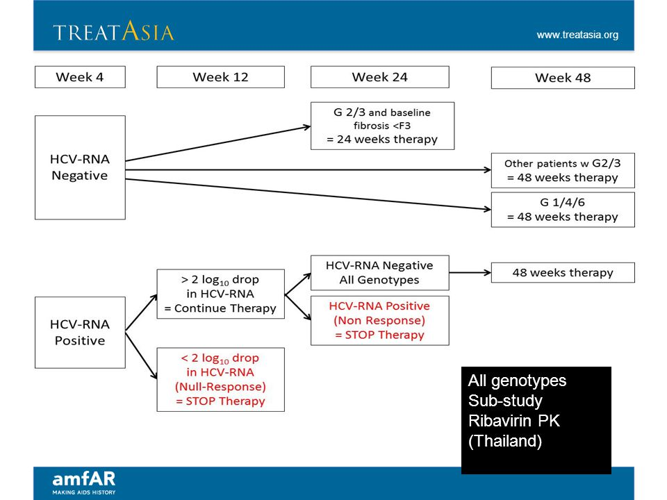 All genotypes Sub-study Ribavirin PK (Thailand)