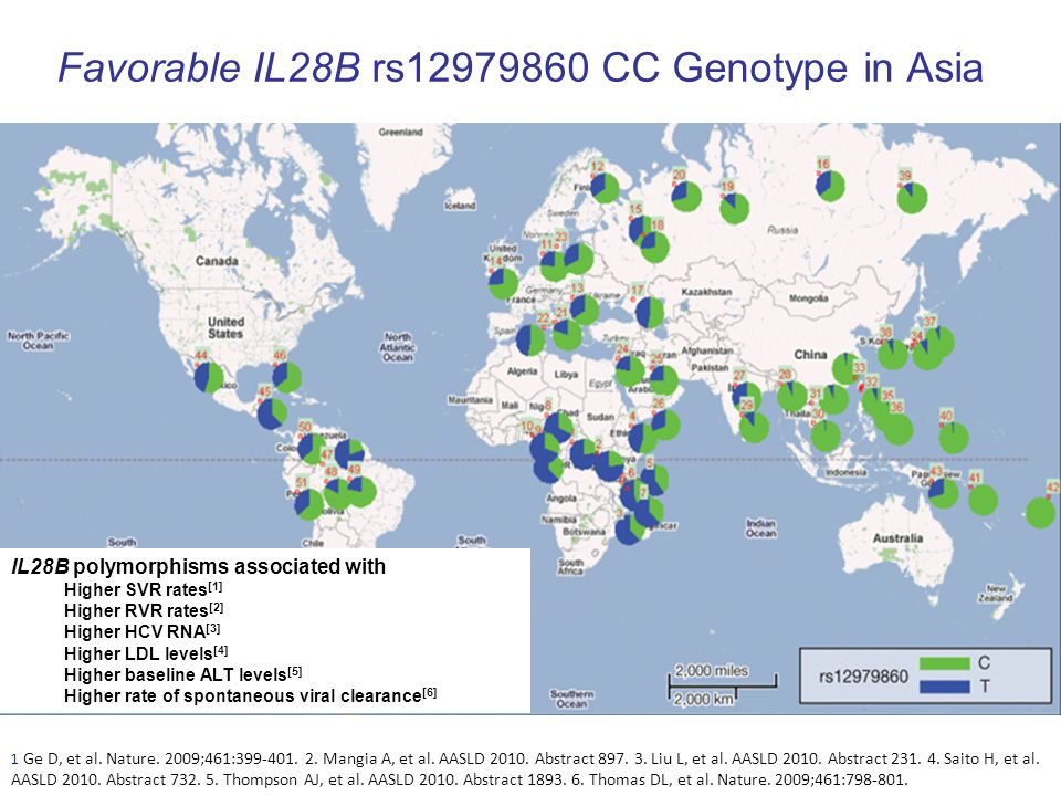 Favorable IL28B rs12979860 CC Genotype in Asia