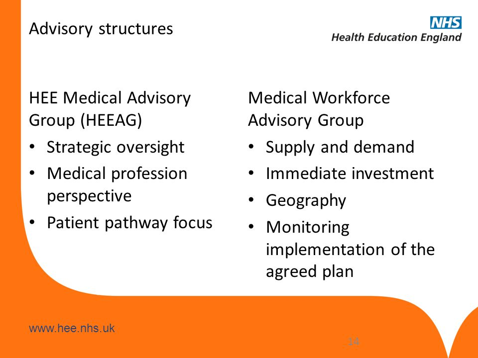 Advisory structures HEE Medical Advisory Group (HEEAG) Strategic oversight. Medical profession perspective.