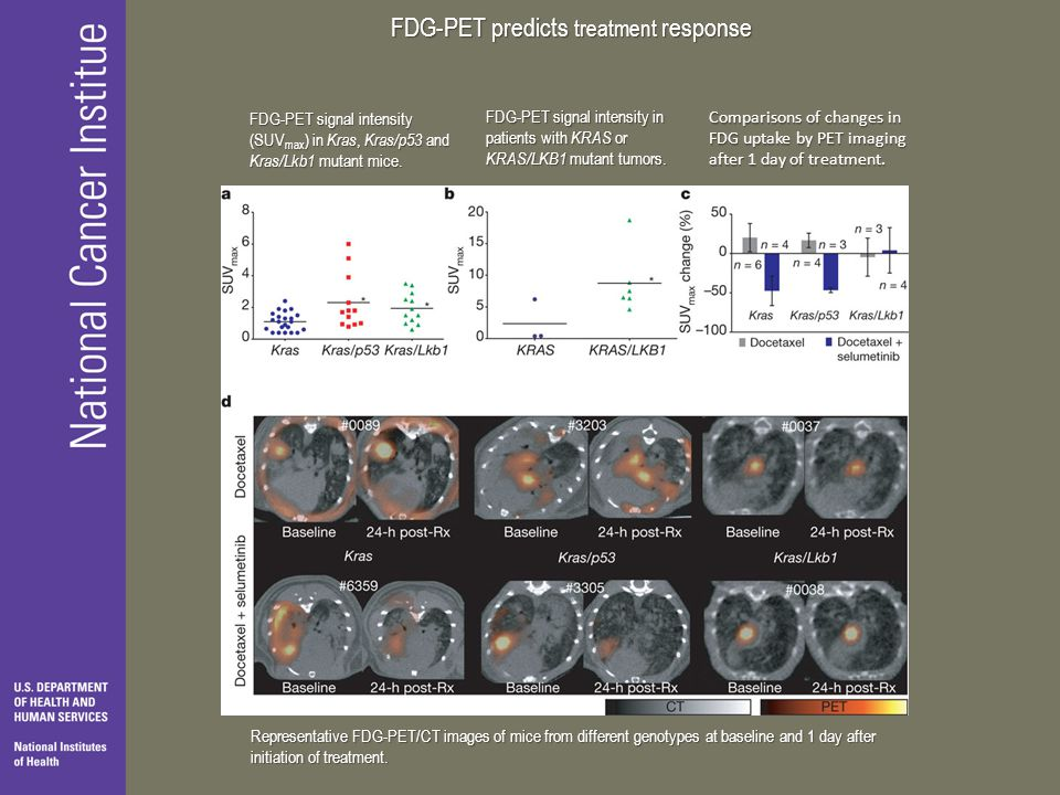 FDG-PET predicts treatment response