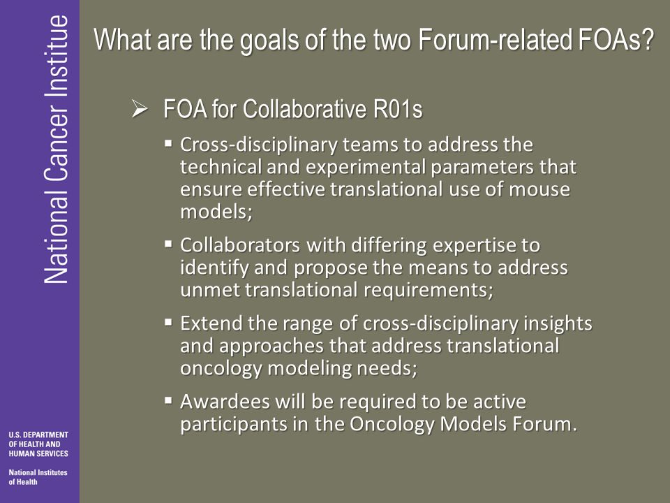 What are the goals of the two Forum-related FOAs