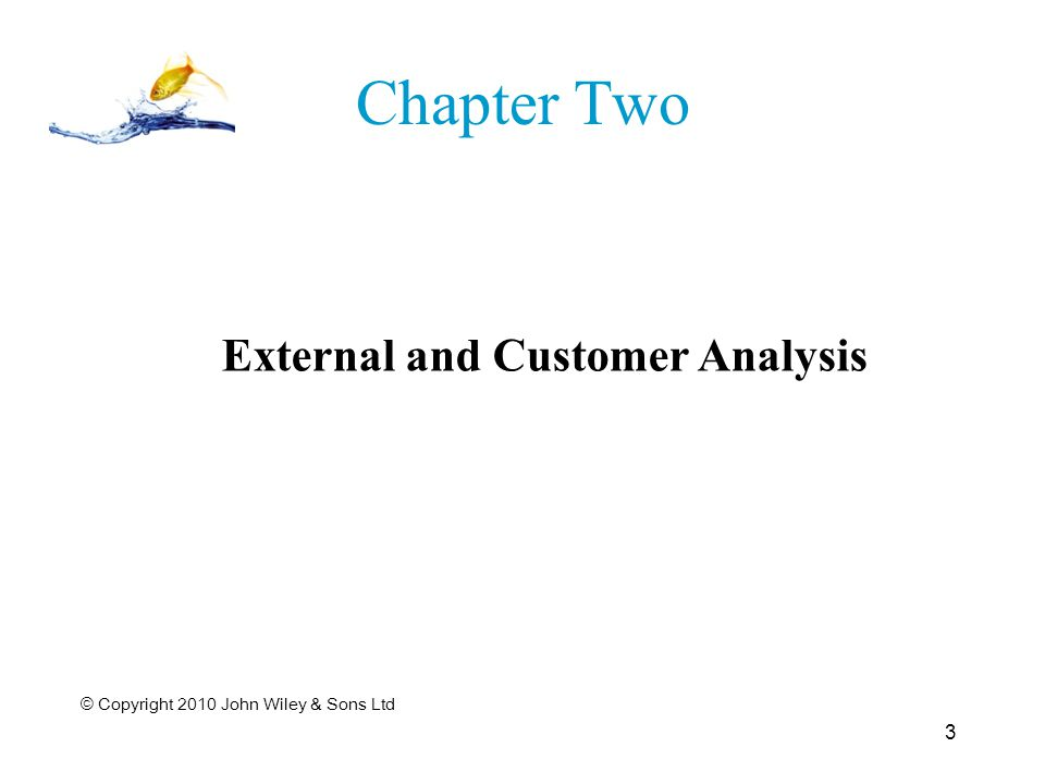 External and Customer Analysis