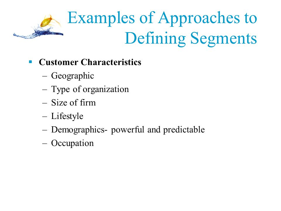 Examples of Approaches to Defining Segments