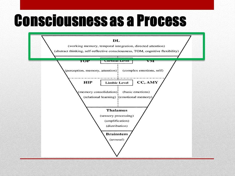 Consciousness as a Process