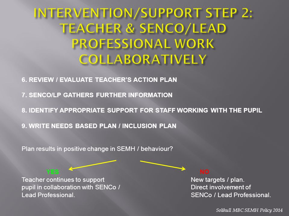 INTERVENTION/SUPPORT STEP 2: TEACHER & SENCO/LEAD PROFESSIONAL WORK COLLABORATIVELY