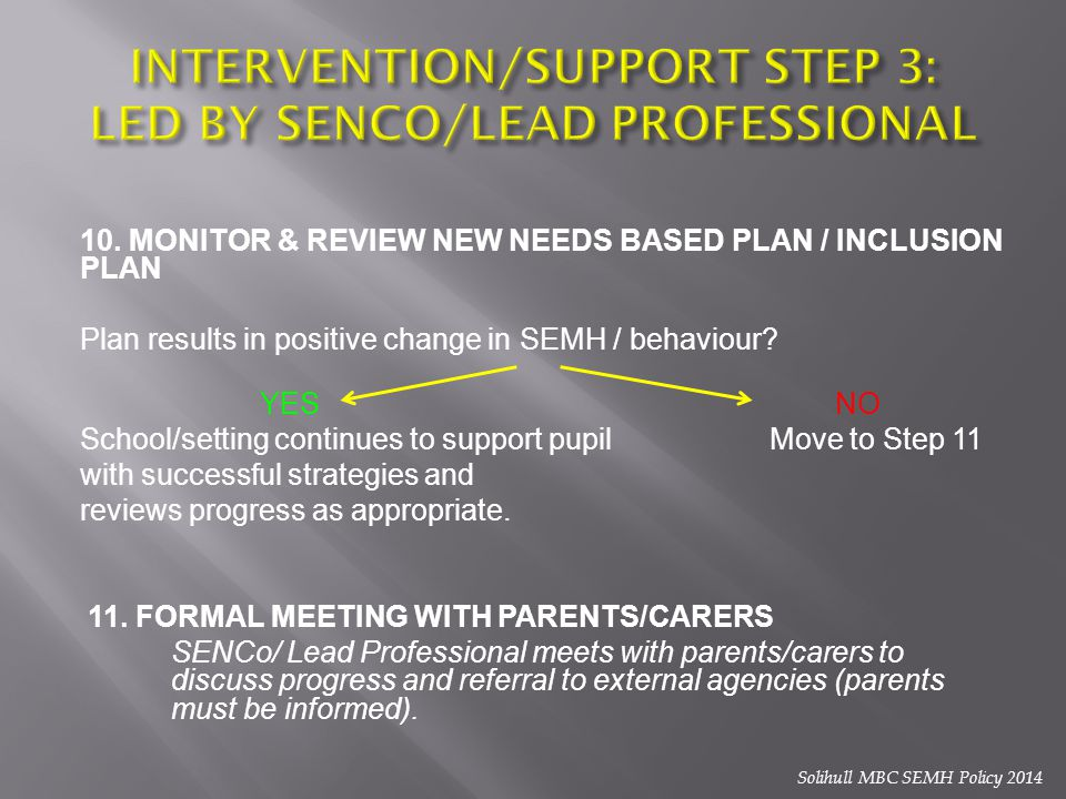 INTERVENTION/SUPPORT STEP 3: LED BY SENCO/LEAD PROFESSIONAL