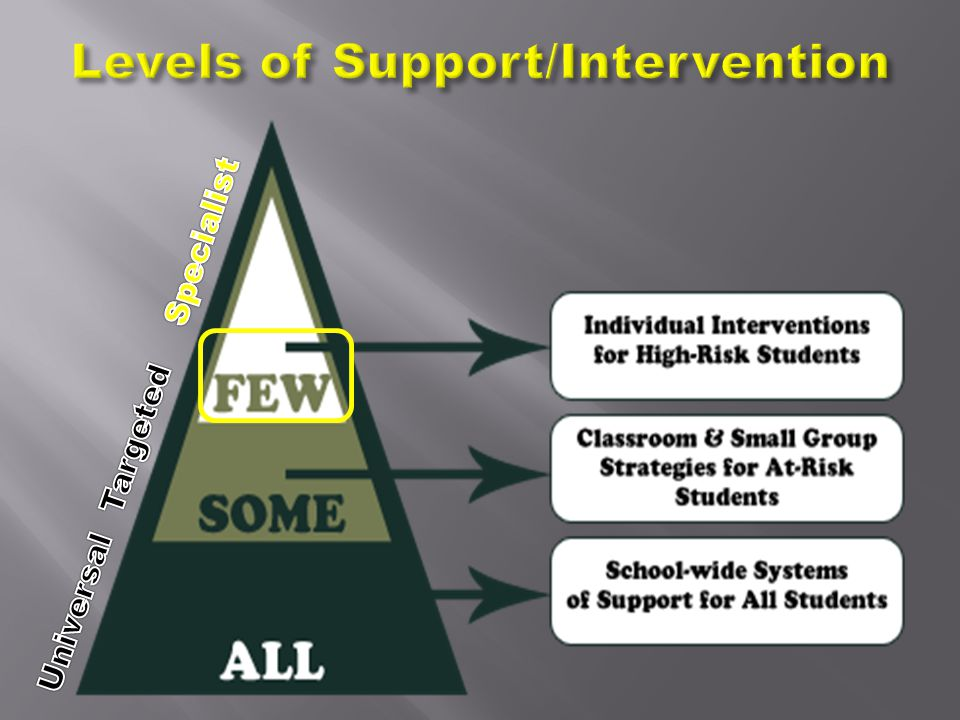 Levels of Support/Intervention