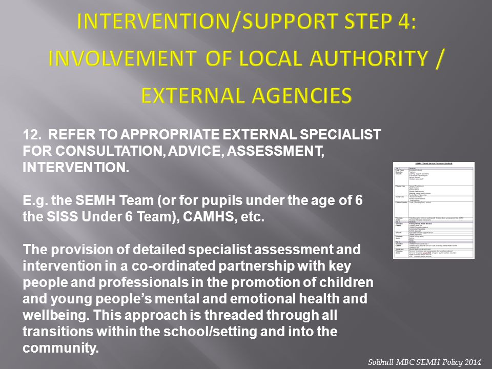 INTERVENTION/SUPPORT STEP 4: INVOLVEMENT OF LOCAL AUTHORITY / EXTERNAL AGENCIES