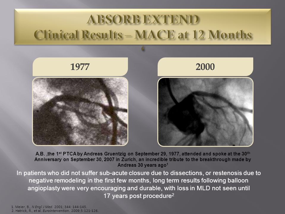 ABSORB EXTEND Clinical Results – MACE at 12 Months '