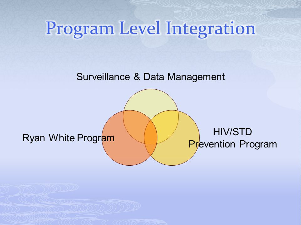 Program Level Integration