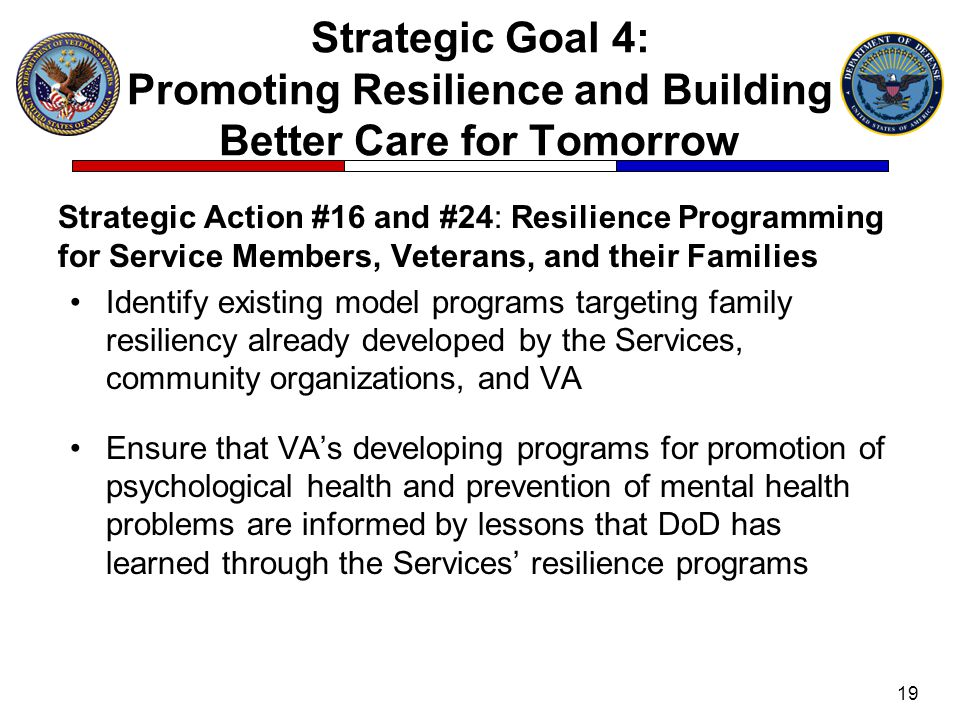 Strategic Goal 4: Promoting Resilience and Building Better Care for Tomorrow