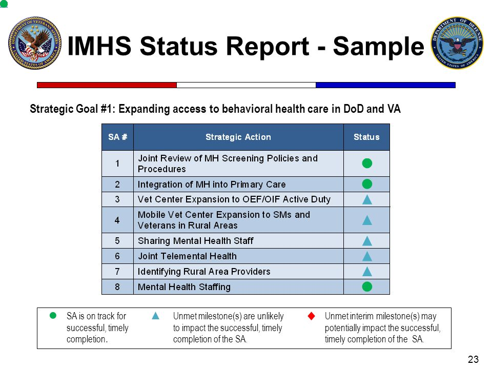 IMHS Status Report - Sample