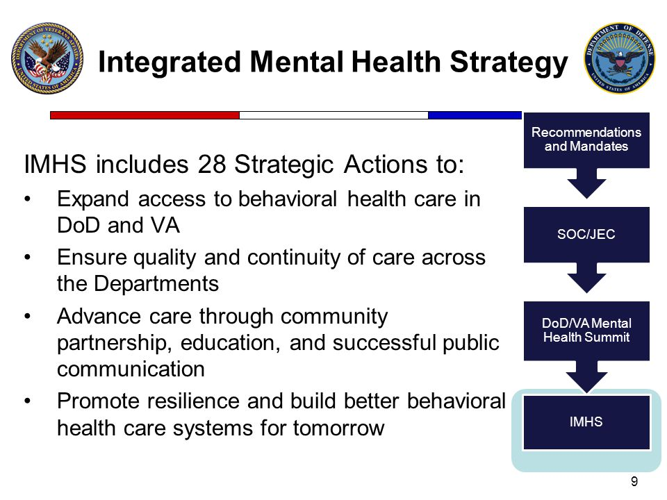 Integrated Mental Health Strategy