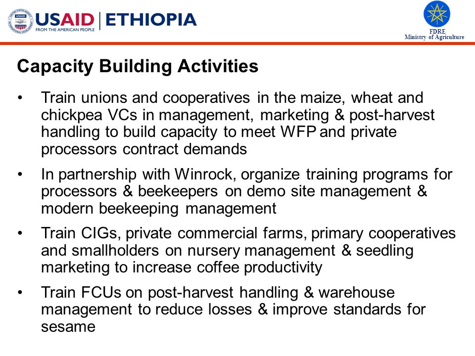 Capacity Building Activities
