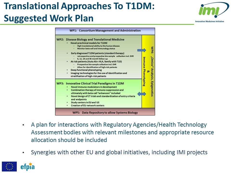 Translational Approaches To T1DM: Suggested Work Plan