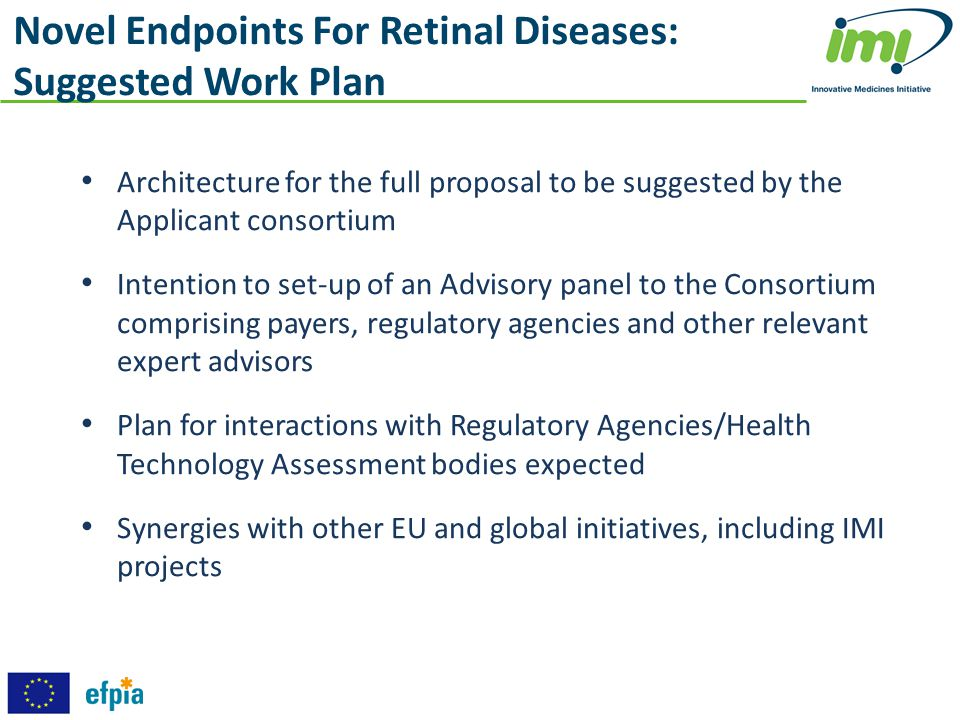 Novel Endpoints For Retinal Diseases: Suggested Work Plan