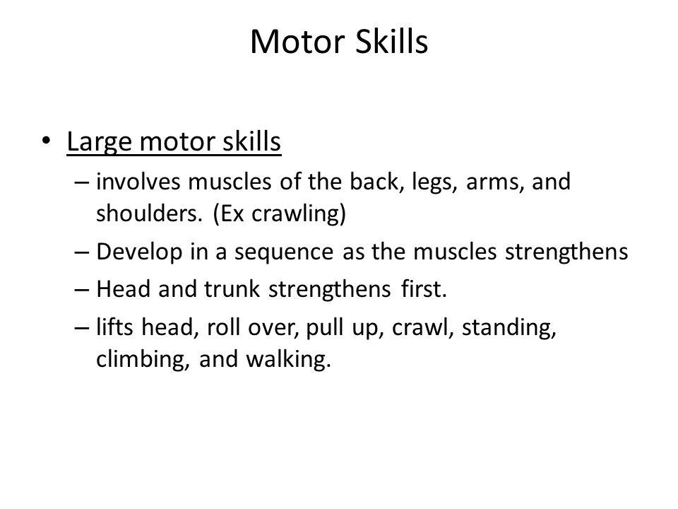 Motor Skills Large motor skills