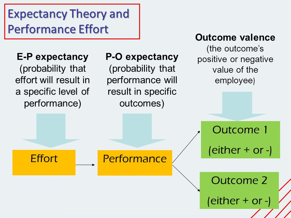 Expectancy Theory and Performance Effort