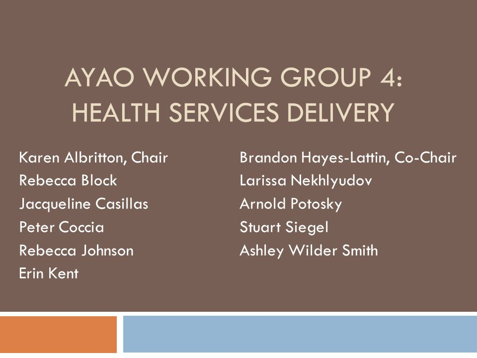 AYAO WORKING GROUP 4: HEALTH SERVICES DELIVERY