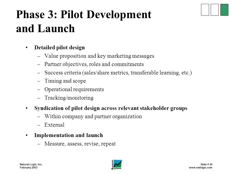 Phase 3: Pilot Development and Launch