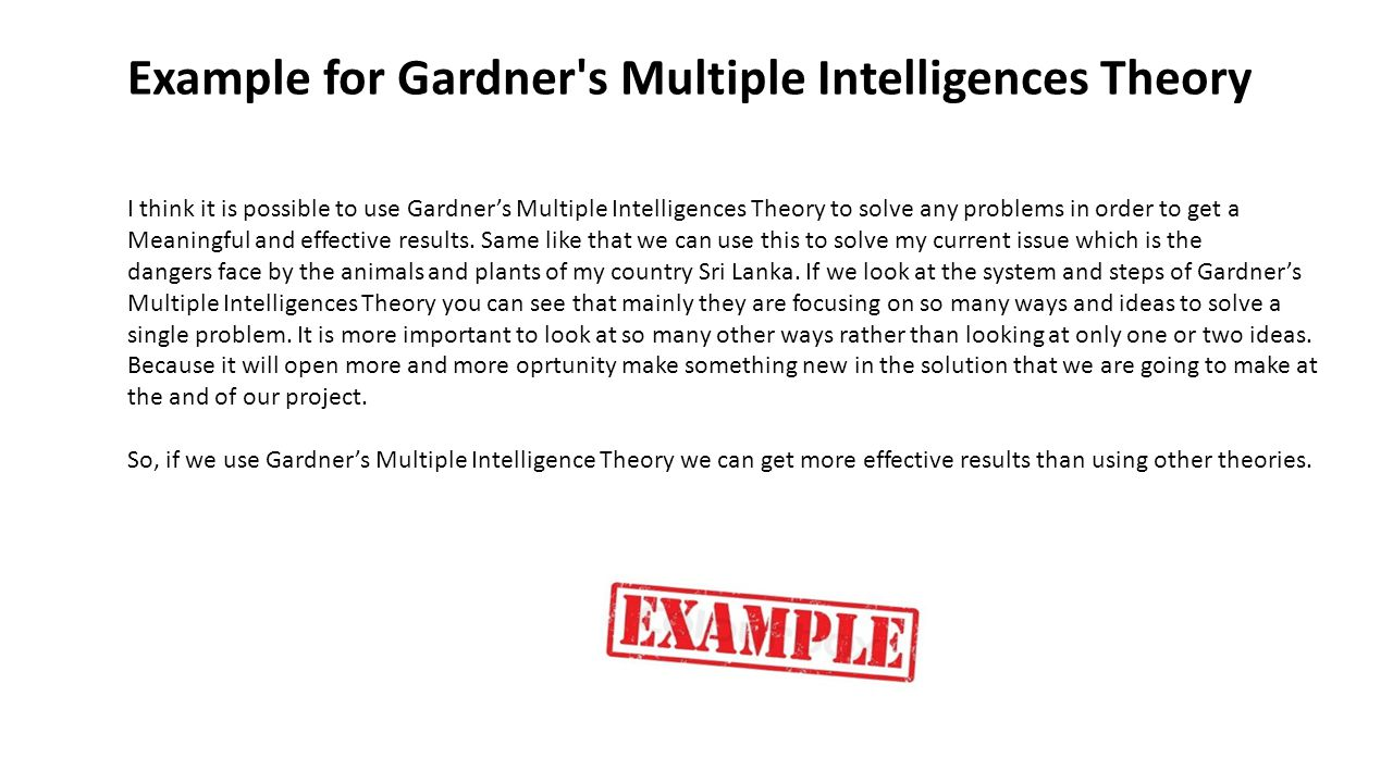 Example for Gardner s Multiple Intelligences Theory