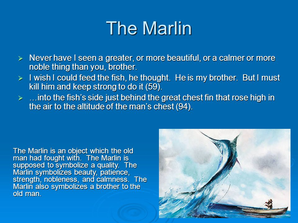 The Marlin Never have I seen a greater, or more beautiful, or a calmer or more noble thing than you, brother.