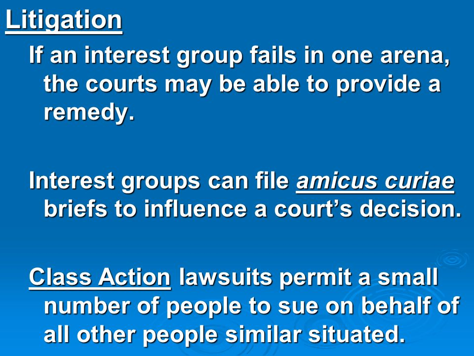 Litigation If an interest group fails in one arena, the courts may be able to provide a remedy.