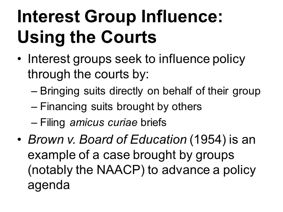 Interest Group Influence: Using the Courts