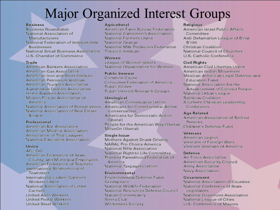 Major Organized Interest Groups
