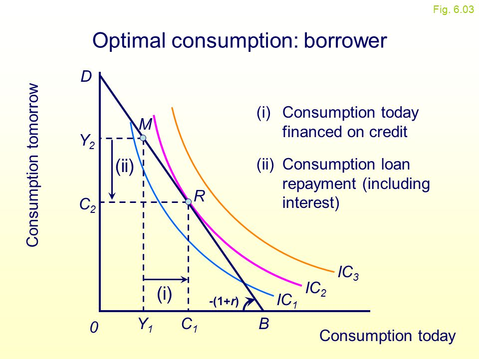Optimal consumption: borrower
