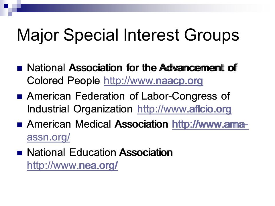 Major Special Interest Groups