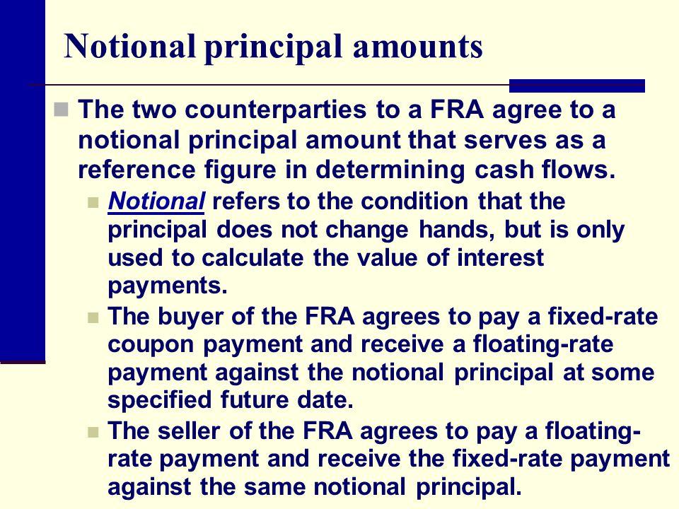 Notional principal amounts