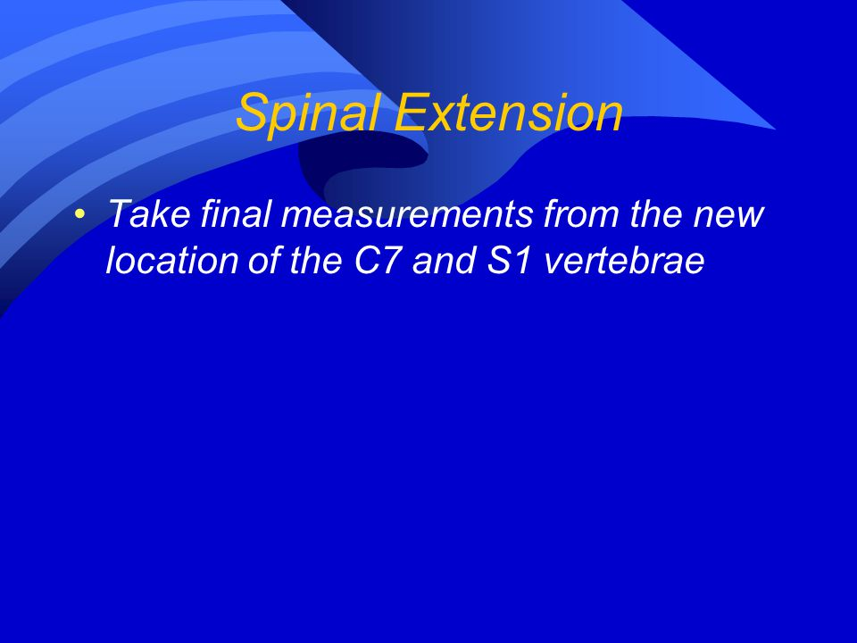 Spinal Extension Take final measurements from the new location of the C7 and S1 vertebrae