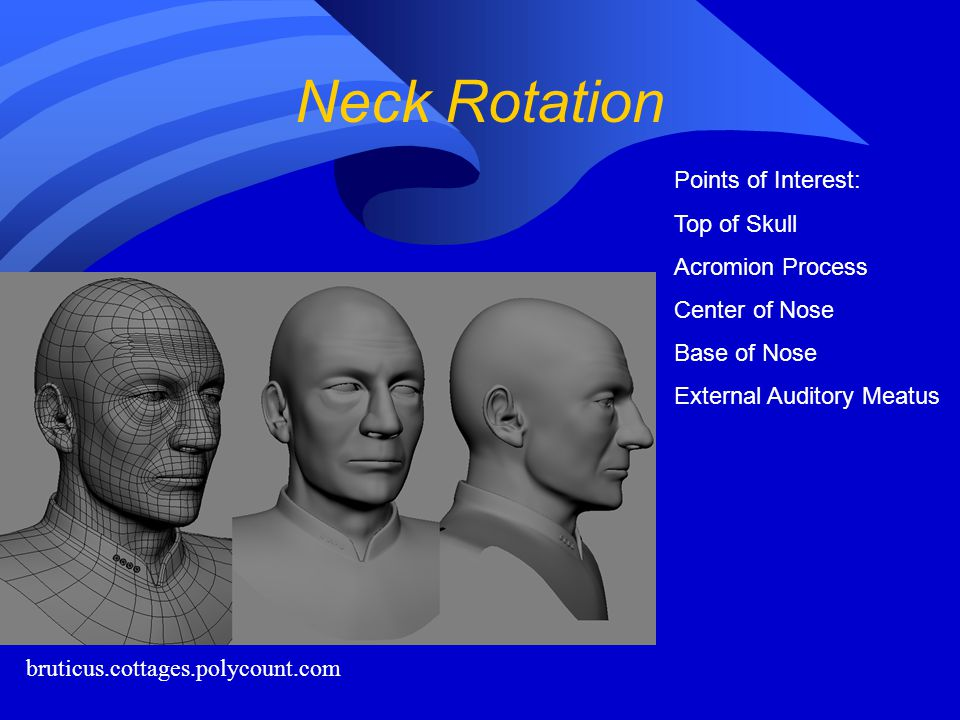 Neck Rotation Points of Interest: Top of Skull Acromion Process
